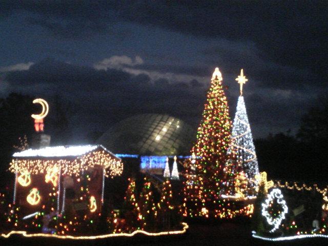 とっとり花回廊クリスマスイルミネーション