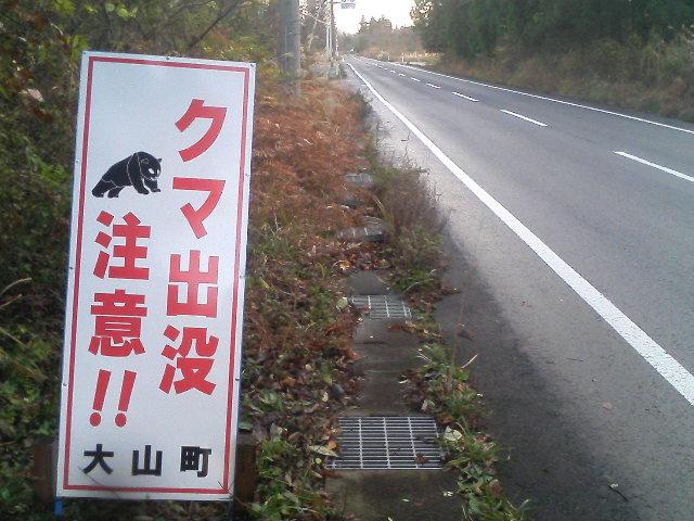 クマ出没注意〜!
