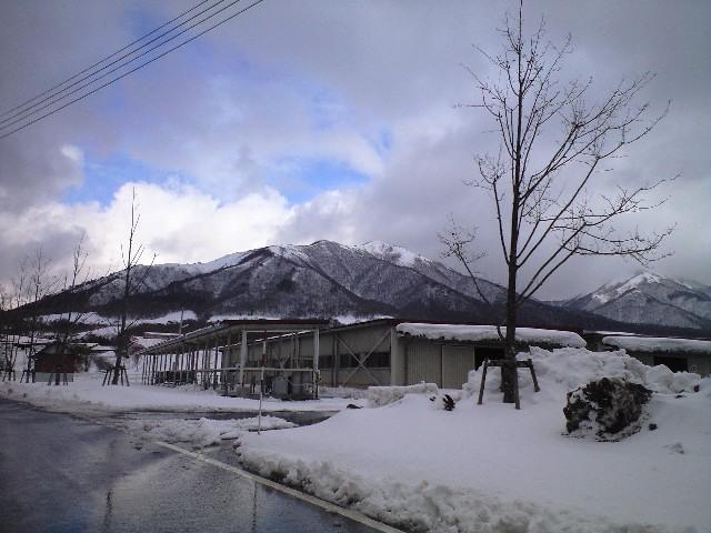 蒜山高原に来ています。