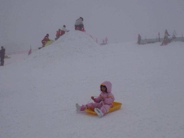 大山高原ますみずスキー場