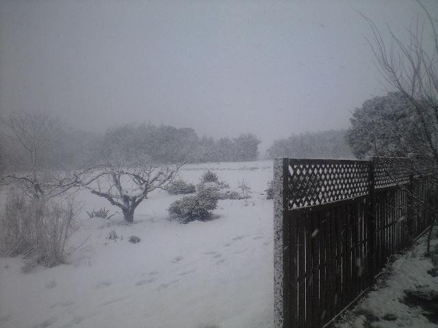 山陰はやっぱり雪国だった・・・