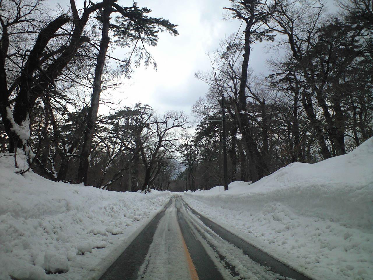 雪の回廊を行く