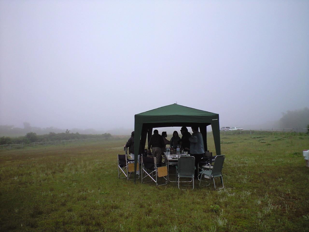 霧の中で・・・