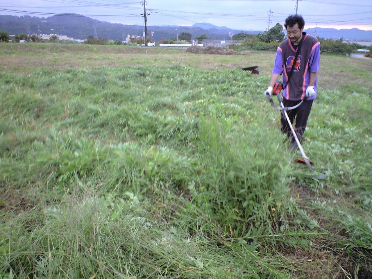 草刈り終了〜♪