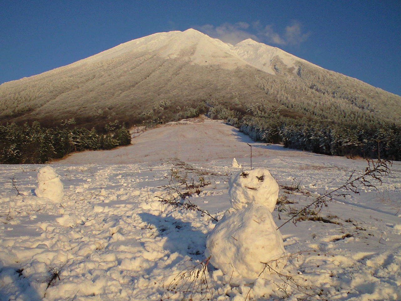 少し気の早い雪ダルマたち