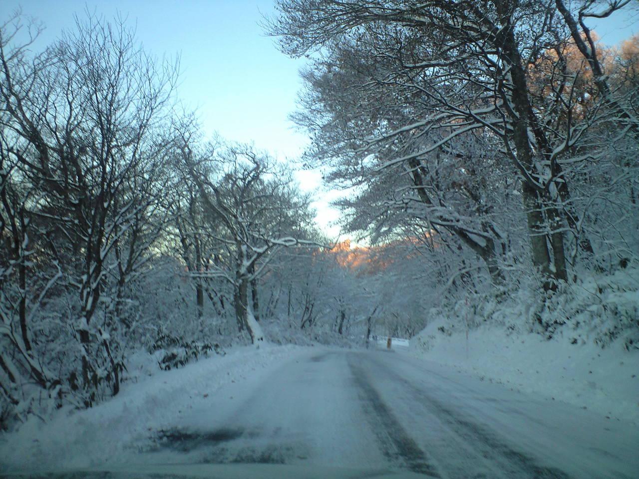 雪景色の大山パークウェイ
