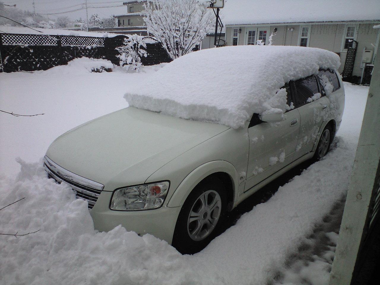 一夜で積雪、埋まってま〜す♪