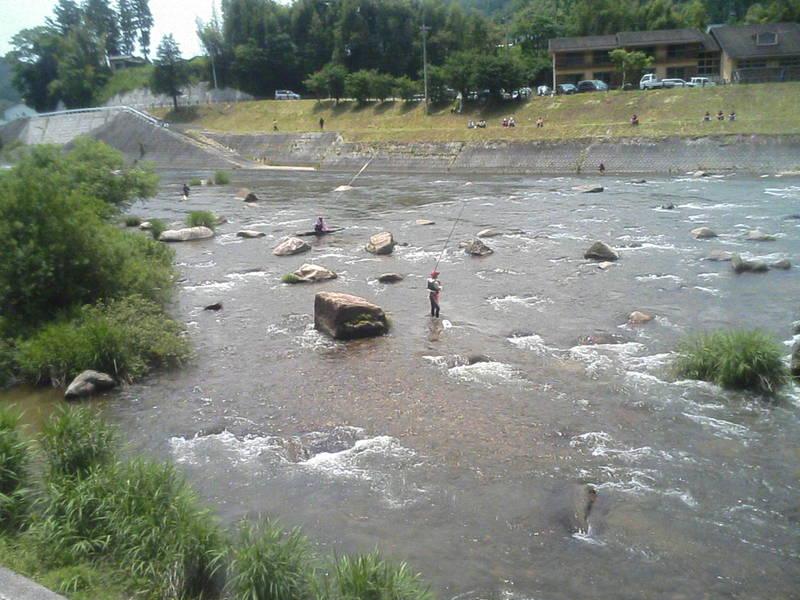 日野川で、鮎釣り競技が・・・。