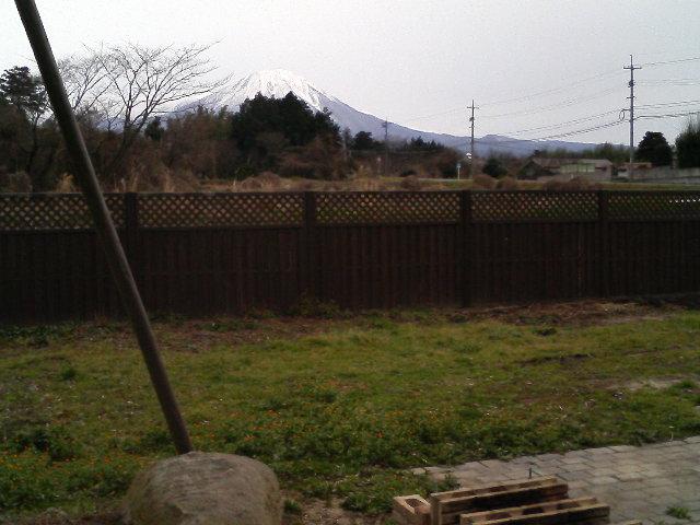 塀が直りました。