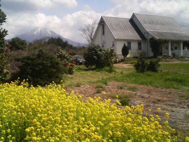 大山王国・大山ブランチは春の装い