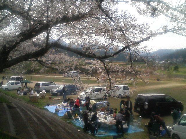 法勝寺川ほとりでの花見開始っ!