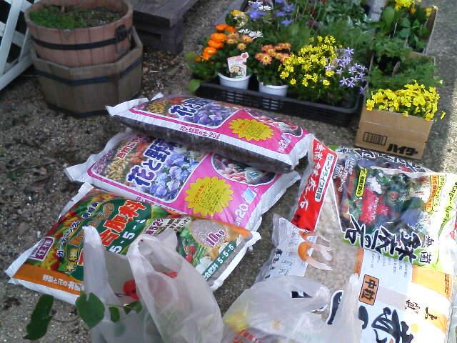 今日は天気が良いので花を植えよう〜!
