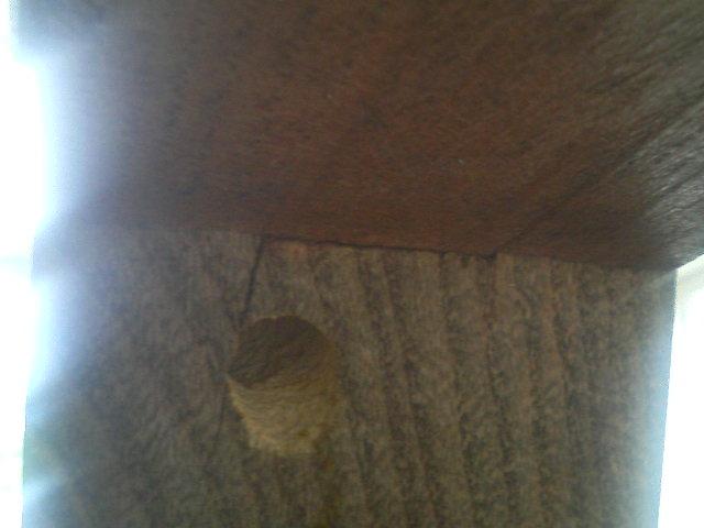 木製テーブルに蜂の巣穴?